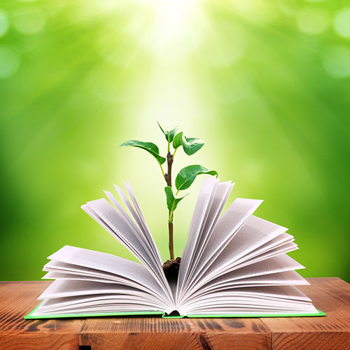 Open book with plant coming out of it